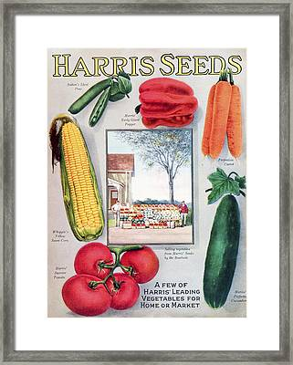 Historic Harris Seeds Catalog Framed Print by Remsberg Inc