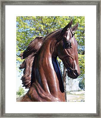 Horse Head In Bronze Framed Print by Roger Potts