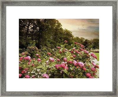 In The Pink Framed Print by Jessica Jenney