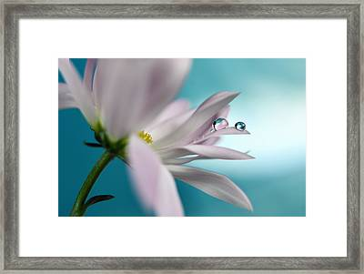 In Turquoise Company Framed Print by Heidi Westum