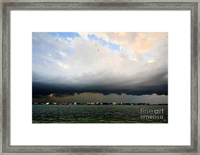 Into The Storm Framed Print by David Lee Thompson
