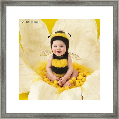 Jai Framed Print by Anne Geddes