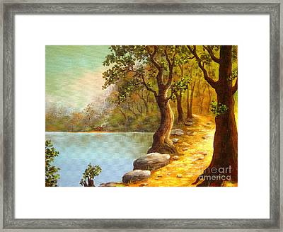 Lakeside Path Framed Print by Shasta Eone
