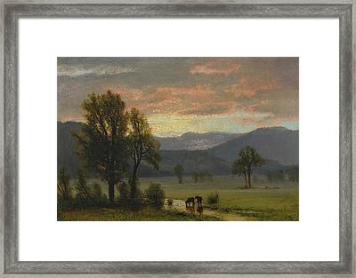 Landscape With Cattle Framed Print by Albert Bierstadt