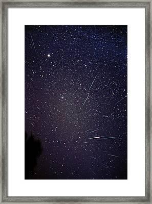 Leonid Meteors Framed Print by Dr Fred Espenak