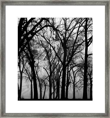Leta Framed Print by Ken Walker