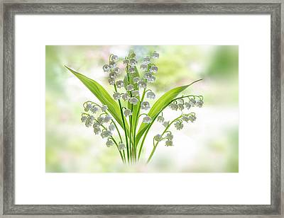 Lily Of The Valley Framed Print by Jacky Parker
