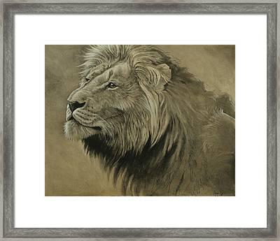 Lion Portrait Framed Print by Aaron Blaise