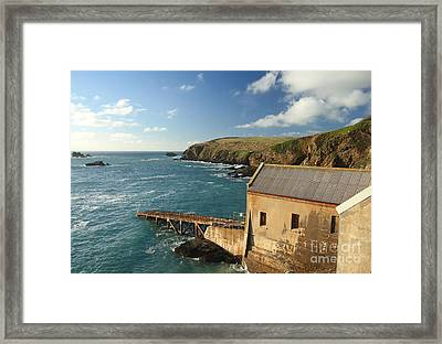 Lizard Point Framed Print by Carl Whitfield