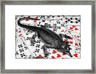 Lucky  Framed Print by Jeff  Gettis