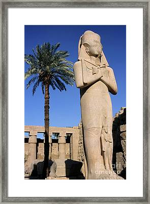 Majestic Statue Of Ramses II At Karnak Temple Framed Print by Sami Sarkis