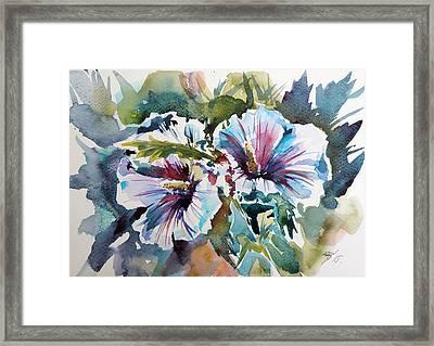 Mallow Framed Print by Kovacs Anna Brigitta