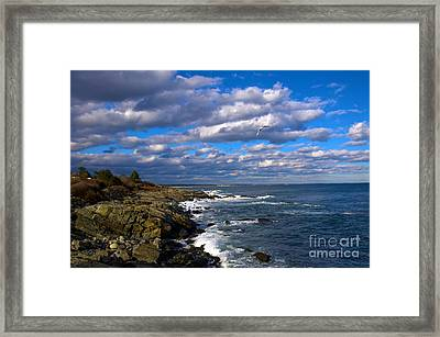 Marginal Way Framed Print by Tom Callan