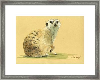 Meerkat Or Suricate Painting Framed Print by Juan  Bosco