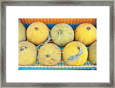 Melons Framed Print by Tom Gowanlock