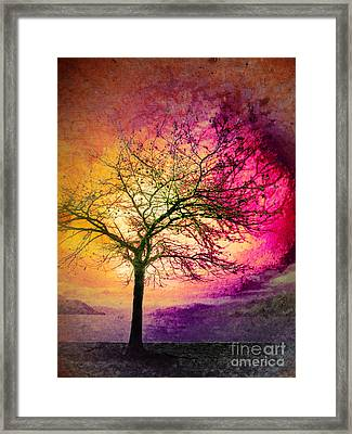 Morning Fire Framed Print by Tara Turner