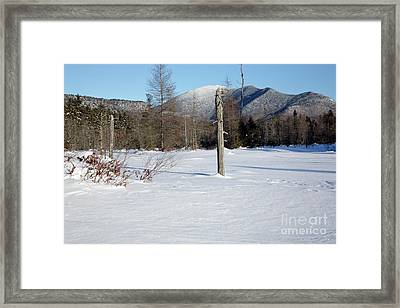 Mount Carrigain - White Mountains New Hampshire Usa Framed Print by Erin Paul Donovan