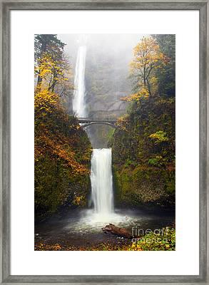 Multnomah Autumn Framed Print by Mike Dawson