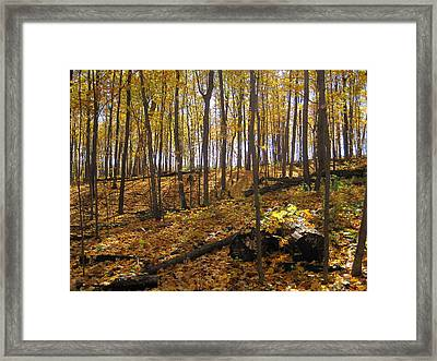 Music Of The Fall Framed Print by Leon Zernitsky