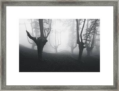 Mysterious Forest In Black And White Framed Print by Mikel Martinez de Osaba
