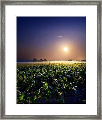 Mystic Framed Print by Phil Koch
