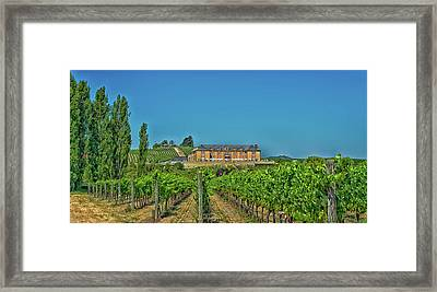 Napa Valley Vineyard And Winery Framed Print by Mountain Dreams