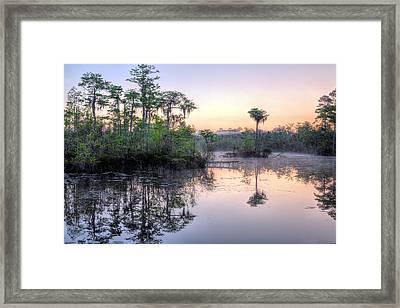 Natural Florida Framed Print by JC Findley