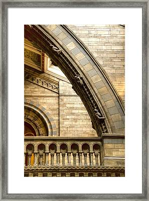 Natural History Museum Kensington  Framed Print by David French