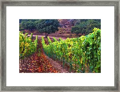 Nearly Harvest Framed Print by Patricia Stalter