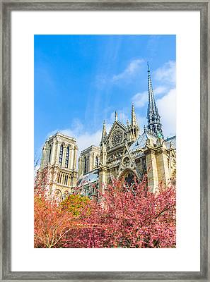 Notre Dame Cathedral In Springtime Framed Print by Nila Newsom