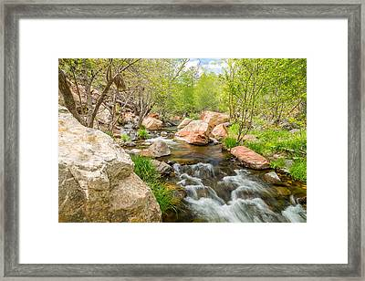 Oak Creek Framed Print by Jon Manjeot
