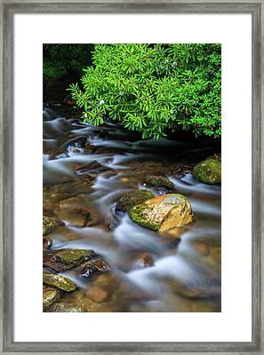 Oconaluftee River Framed Print by Bryan Bzdula