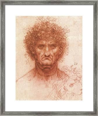 Old Man With Ivy Wreath And Lion's Head Framed Print by Leonardo da Vinci