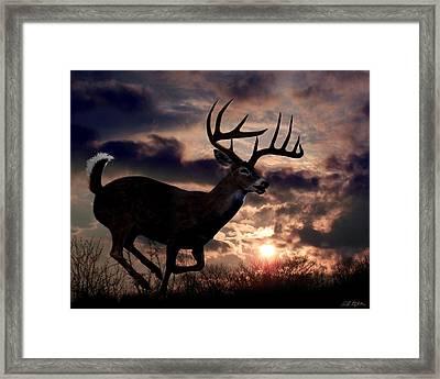 On The Run Framed Print by Bill Stephens
