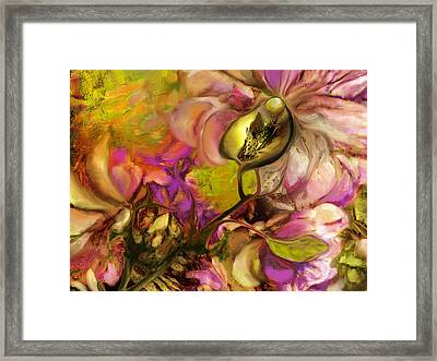 Orchid Framed Print by Anne Weirich