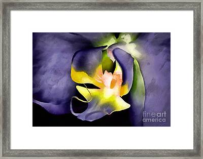 Orchid Of Fantasy Framed Print by Krissy Katsimbras