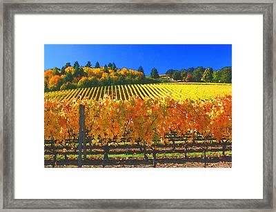 Oregon Wine Country Framed Print by Margaret Hood