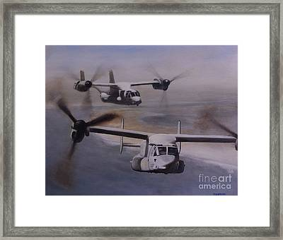 Ospreys Over The New River Inlet Framed Print by Stephen Roberson
