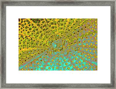Outer Space Framed Print by Heiko Koehrer-Wagner
