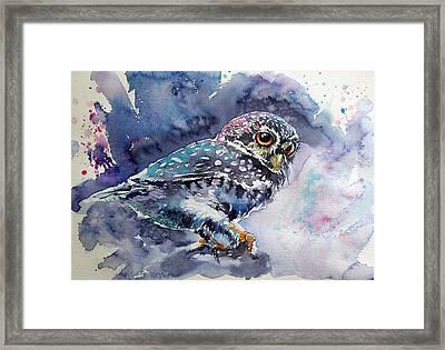 Owl At Night Framed Print by Kovacs Anna Brigitta