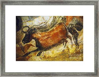 Paleolithic Cave Painting Framed Print by Ruth Hofshi