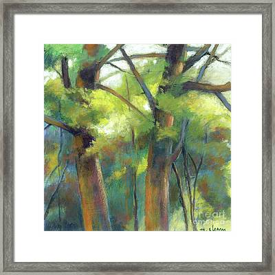 Park Walk 1 Framed Print by Melody Cleary