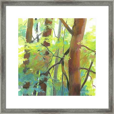 Park Walk 2 Framed Print by Melody Cleary