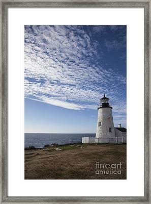 Pemaquid Lighthouse Framed Print by Timothy Johnson