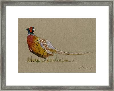 Pheasant Bird Art Framed Print by Juan  Bosco