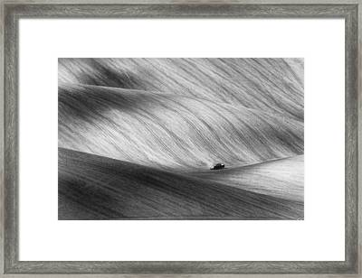 Pickup Framed Print by Piotr Krol (bax)