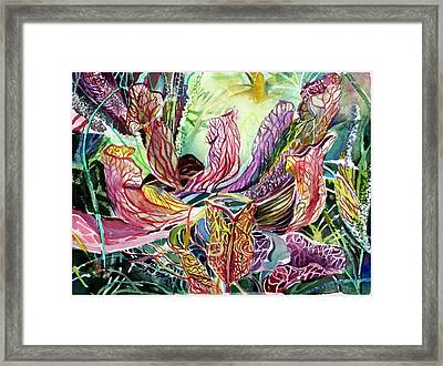 Pitcher Plants Framed Print by Mindy Newman
