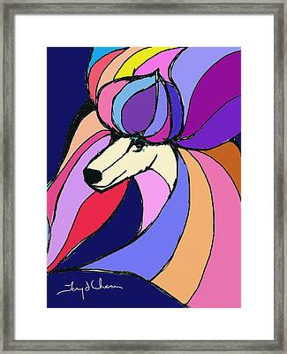 Poodle Colors Framed Print by Terry Chacon