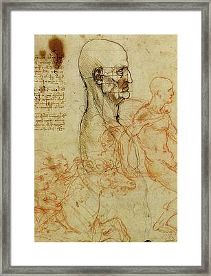 Profile Of A Man And Study Of Two Riders Framed Print by Leonardo da Vinci