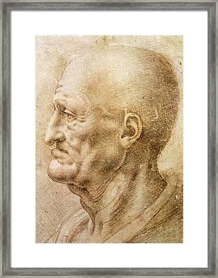 Profile Of An Old Man Framed Print by Leonardo da Vinci